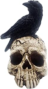 ThriBartLive Raven On Skull Halloween Decoration - Gothic Crow On Skull Statue, Bird Perching On Skeleton Figurine, Macabre Ossuary Sculpture