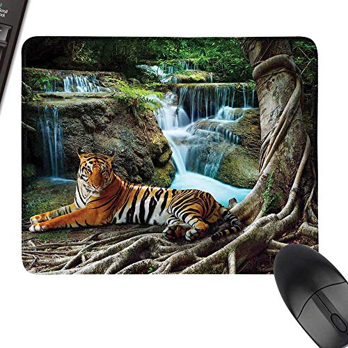 - Safari Decor Hot Selling Extra Large Mouse Pad Indochina Tiger Lying with Relaxing Under Banyan Tree Against Limestone Waterfalls Picture with Stitched Edges 35.4