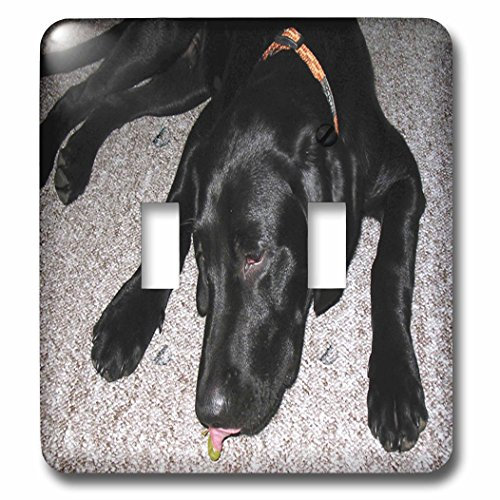 3dRose LSP_50180_2 Black Lab Eating Grape Toggle Switch