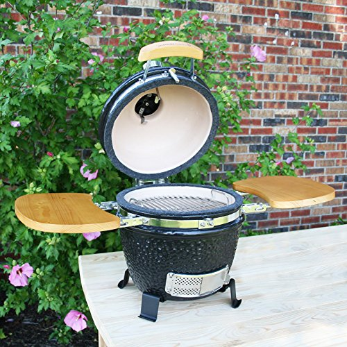 Vision Grills Classic P Series Kamado Charcoal Grill
