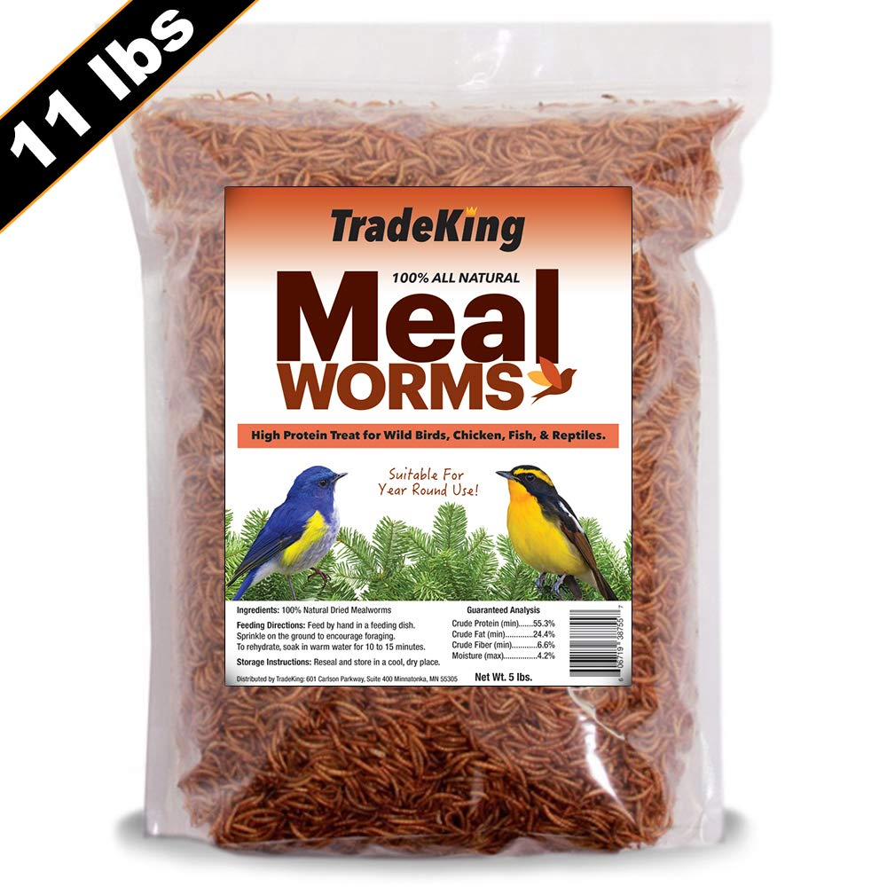 TradeKing 11 lb Dried Mealworms - High Protein Treat for Wild Birds, Chicken, Fish & Reptiles by TradeKing