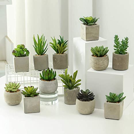 12x Artificial Succulent Plants Small Faux Cacti Indoor /& Outdoor Decoration