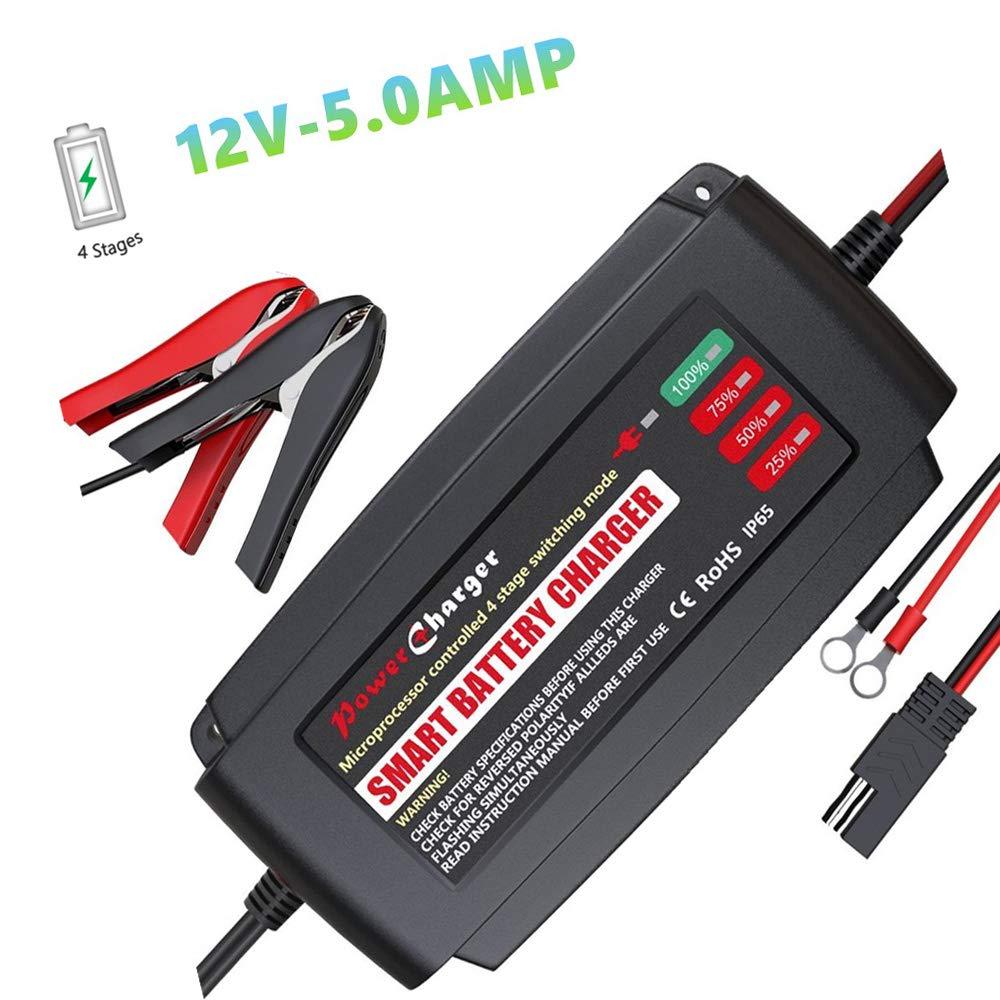 12V 5Amp Portable Smart Battery Charger, IP65 Waterproof Car Battery  Charger with Alligator Clips for 12V/24V/36V/48 AGM Gel VRLA SLA Wet  Battery  