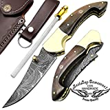 Brown Bone 7.5″ Custom Handmade Damascus Steel Brass Bloster Lock Folding Pocket Knife 100% Prime Quality With Sharpening Rod LIMITED OFFER Review