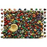 Cobble Hill Rock Collection, 500-Piece