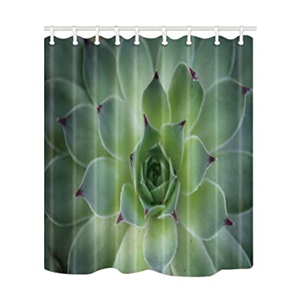 NYMB Cute Succulent Plant Leaves Shower Curtains Polyester Fabric Waterproof Bath Curtain 69X70in