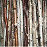 "Birch Stick Packs (Small- roped 3 pack (48"" long x .5"" - 1"" diameter))"