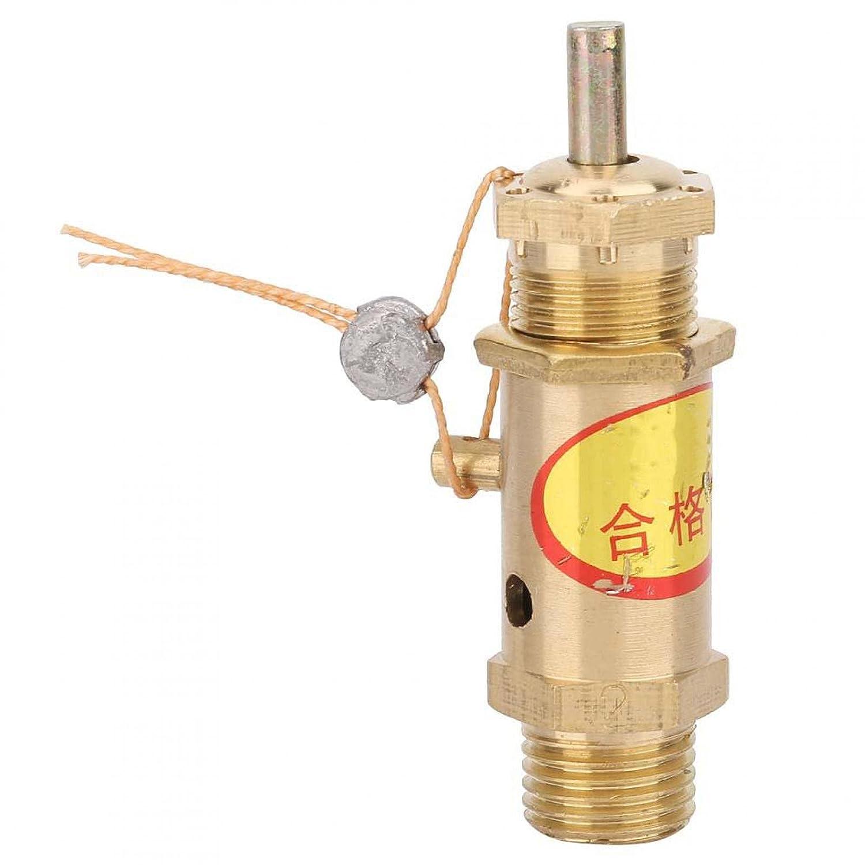 Válvula de presión de liberación de seguridad del compresor de aire G1 / 4 para generador de vapor de caldera para generadores de vapor/calderas(2kg)