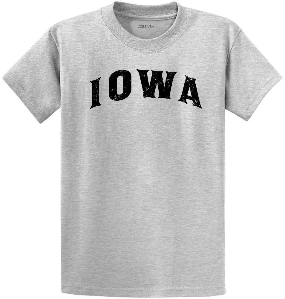Joe's USA Vintage States T-Shirts-Regular Big and Tall-Tall-LT-Ash-Iowa/b