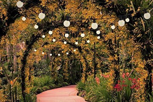 Näve Leuchten Lichterkette mit 10 Kugeln je 15 LEDs in warmweiß, Kunststoff, 1 W, Schwarz, 750 x 8 x 8 cm