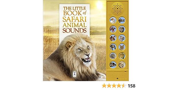 Protects Little Safari health book