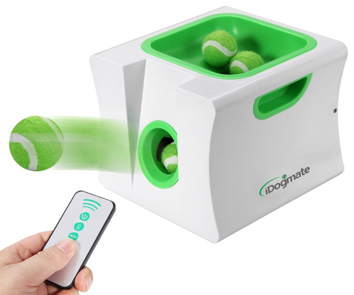 iDogmate Ballwurfmaschine Automatische Ball Launcher für Klein Hunde (Mini)