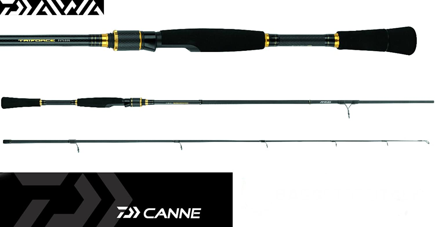 Caña Daiwa Triforce Spinning 2.10 MT 5 – 25 G Medium Fast: Amazon ...