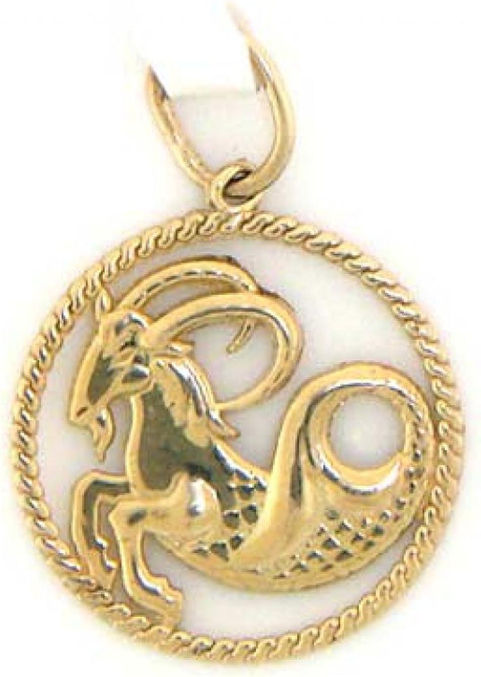 14k Capricorn Zodiac Charm