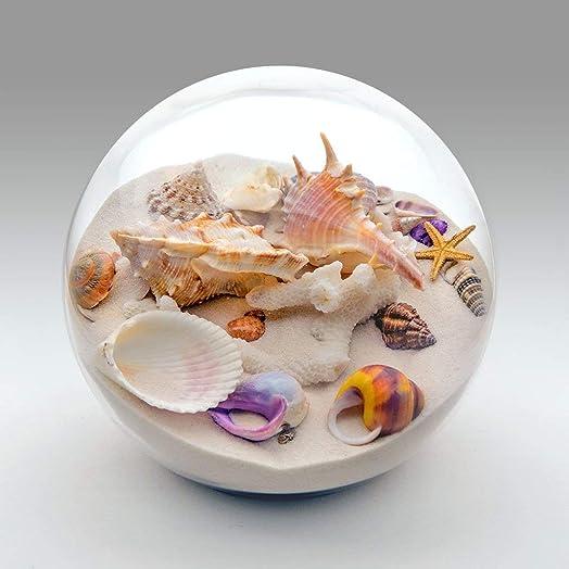 Sandglobelove Collectible Sand and Seashell Sandglobe. Cherish