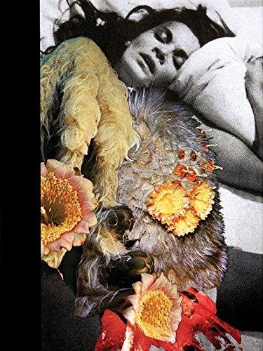Jonah Freeman & Justin Lowe: Black Acid Co-op/Bright White Underground/Stray Light Grey/Artichoke Underground