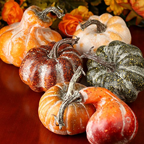 Pumpkins And Gourds - Factory Direct Craft Package of 6 Assorted Shape and Color Artificial Frosted Gourds and Pumpkins for Halloween, Fall and Thanksgiving Decorating