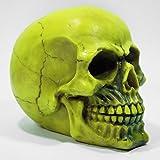 Crânio Esqueleto Caveira Cor Neon Amarelo Escultura Resina