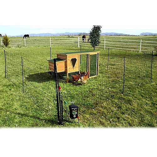 Poultry Fencing Electric (Powerfields Electric Poultry Pen Gate)