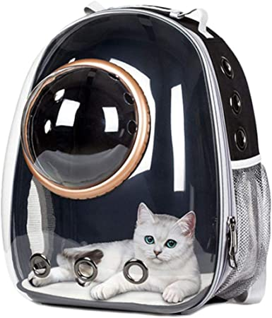 Linwei Outdoor Carrying Breathable Space Capsule Travel Bag Portable Transparent Pet Carrier Cat Dog Backpack,Gold,M: Amazon.es: Hogar