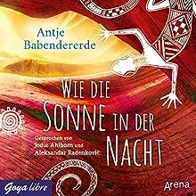 Wie die Sonne in der Nacht Hörbuch von Antje Babendererde Gesprochen von: Jodie Ahlborn, Aleksandar Radenkovic
