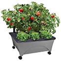 City Pickers 24.5 in. x 20.5 in. Patio Raised Garden Bed Kit