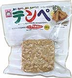 ヤマク食品 テンペ100g×10袋