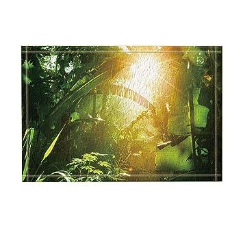 Amazon De Kotom Tropischen Regenwald Decor Sunshine In Banana