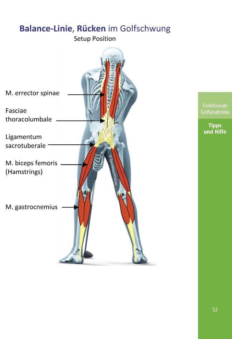 Tolle Golfschwungs Biomechanik Anatomie Galerie - Anatomie Ideen ...