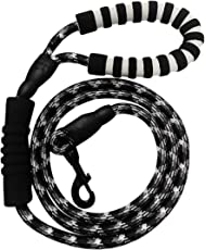 BONAWEN Dog Leash 6FT with Double Padded Handles- Durable Nylon Rope Dog Lead for Large Medium Dogs Control Safety Training