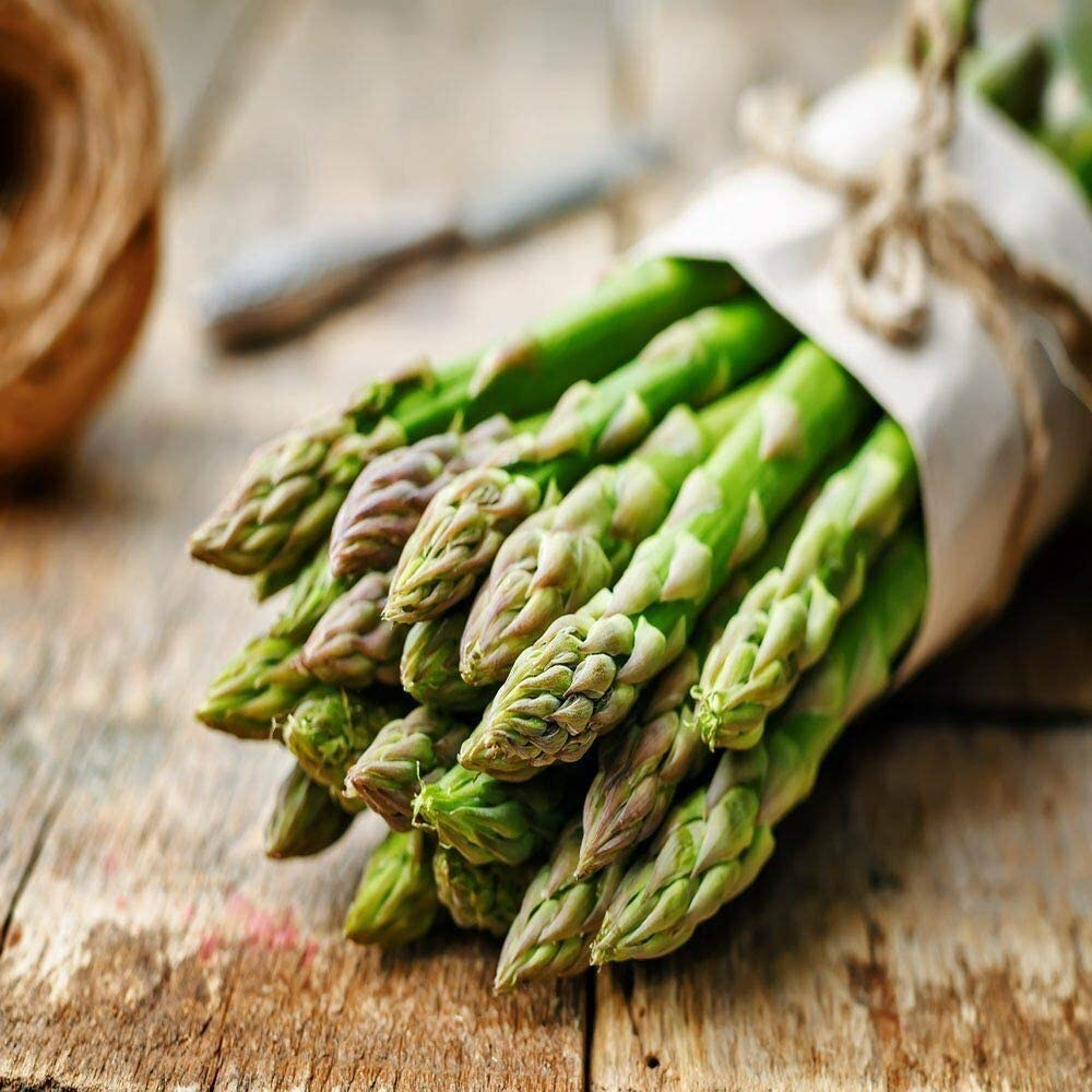 Green Asparagus//Roots 10 Extra Large 2nd Year Free Shipping Best Gift New by Farmerly Organic Seeds