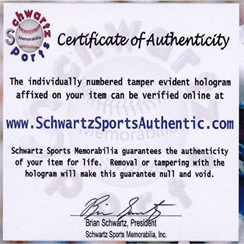 931d52c69 Allen Hurns Signed Autographed Jacksonville Jaguars Jersey with Official  Schwartz Authentication