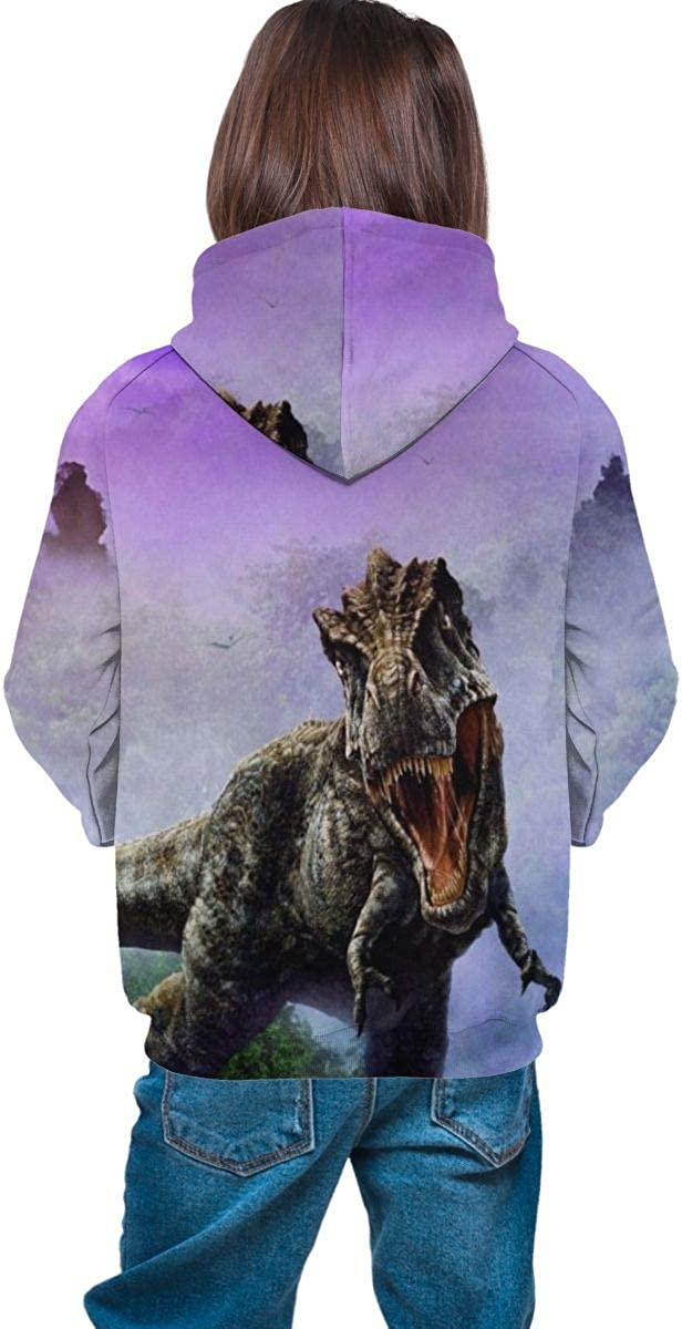 NEPower Teen Hoodies Dinosaur Fog Lightweight Hooded Sweater Daily Party Costumes for Teens with Pocket