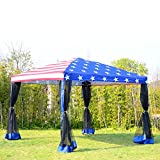 Tamsun 10'x10' Patio Pop up Party Tent Canopy W/ Mosquito Net US Flag