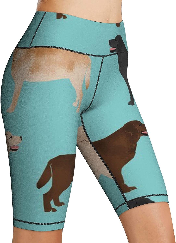 NiYoung Women High Waist Yoga Sport Pants Tummy Control Running Workout Athletic Pants