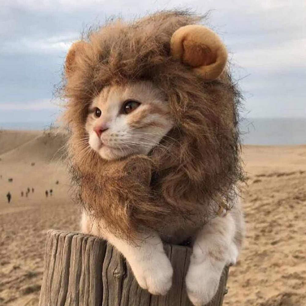 Divertido gorro para mascotas, disfraz de león, melena de gato y ...