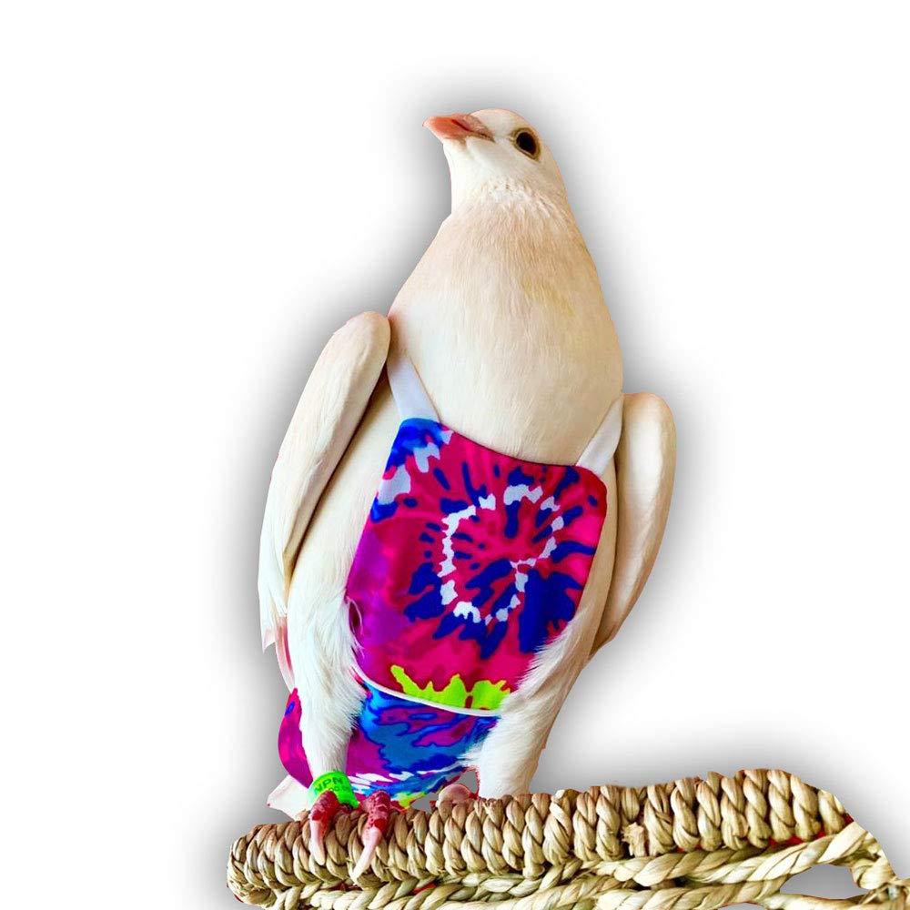 Bev's Bird Boutique - Color Burst Flyper (Open-Back Design) (9) by Bev's Bird Boutique