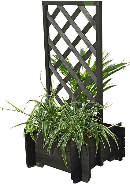 Madera Rose arco negro Macetero Pergola enrejado Rank ayuda: Amazon.es: Jardín
