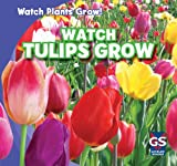 Watch Tulips Grow, Kristen Rajczak, 143394846X