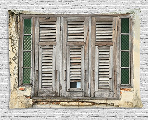 Ambesonne Shutters Decor Collection, Aged Weathered Wooden Window Blinds Rough Cracked Wall Vintage Home Decoration, Bedroom Living Room Dorm Wall Hanging Tapestry, 60 X 40 Inches, Beige Green