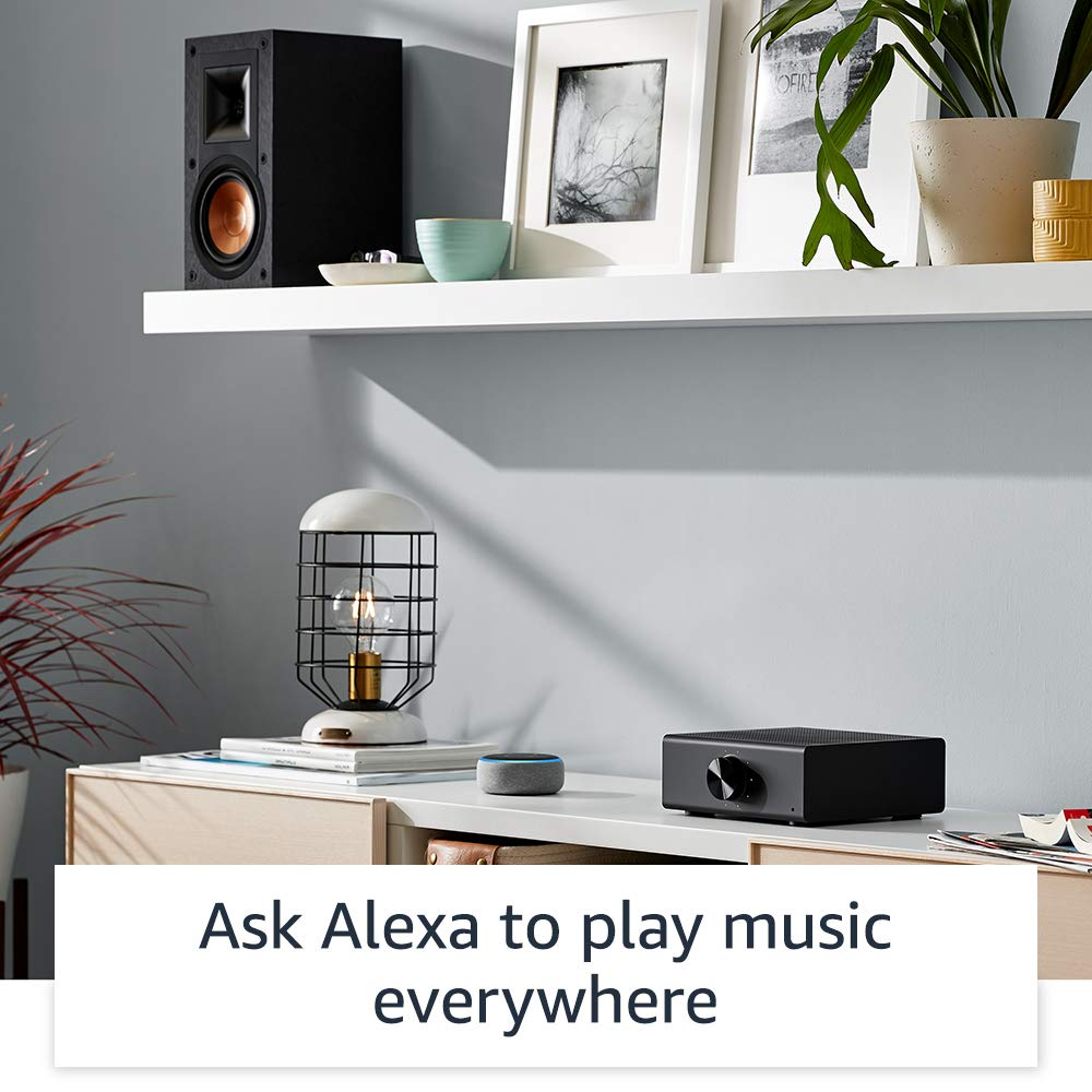 Echo Link Amp - Stream and amplify hi-fi music to your speakers by Amazon (Image #5)