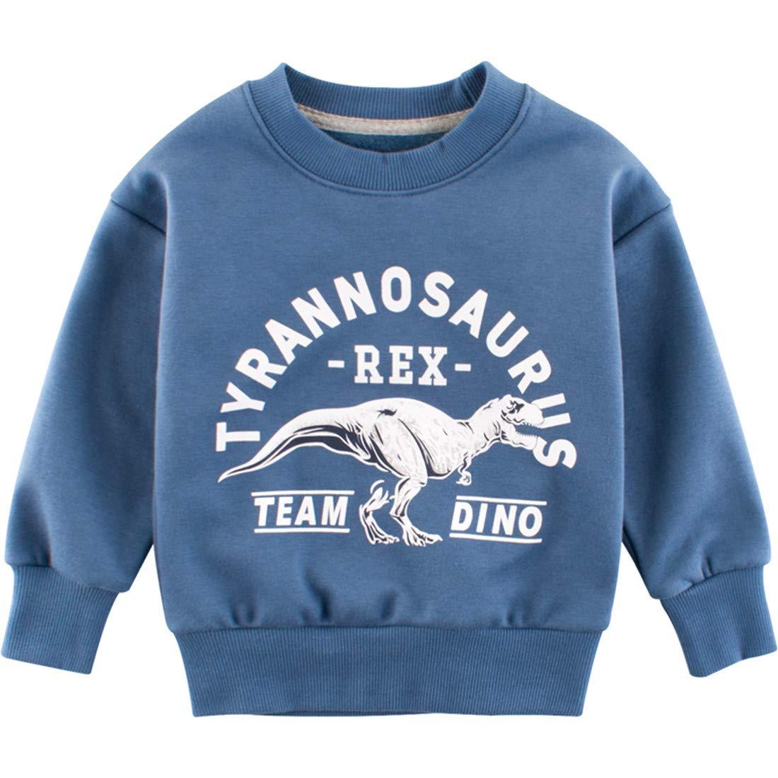 BTGIXSF Little Boys Dinosaur Sweatshirts Cotton Crewneck Long Sleeve Pullover Sweatshirts 1-7T