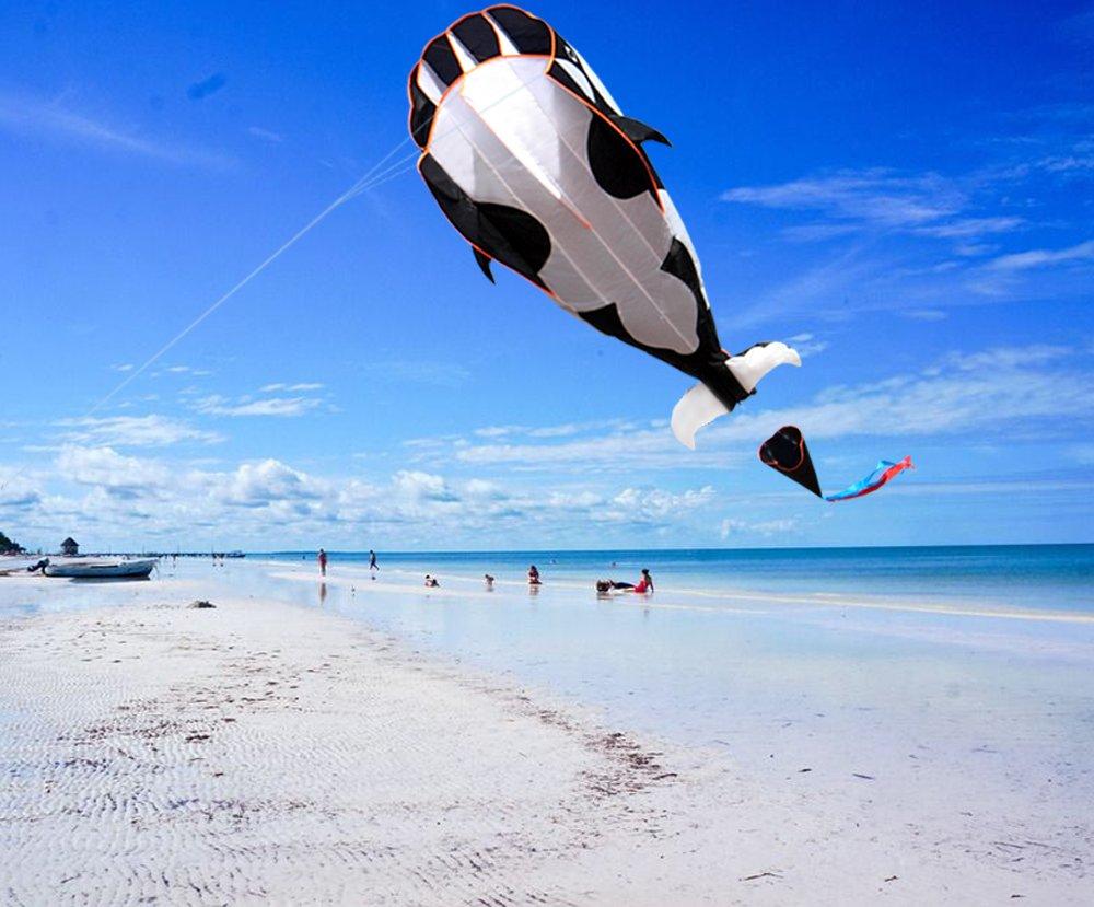 HENGDA KITE-3D Kite Huge Frameless Soft Parafoil Giant Black Dolphin Breeze Kite by HENGDA KITE (Image #5)
