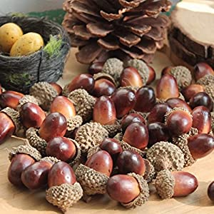 ONWON 100pcs Simulation Artificial Lifelike Small Acorn with Natural Acorn Cap for DIY Decoration Crafting Home House Kitchen Decor - Fake Fruit Props Acorns 1