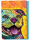 Tree-Free Greetings EcoNotes 12-Count Notecard Set With Envelopes, 4 x 6 Inches, Mr. Fetching Themed Dean Russo Dog Art (56212)