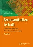 Brennstoffzellentechnik: Grundlagen, Materialien, Anwendungen, Gaserzeugung