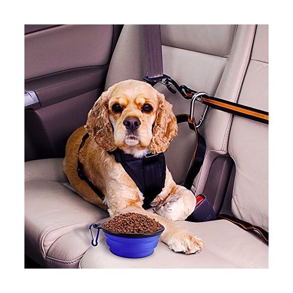 Sabuy Collapsible Dog Travel Bowl 5