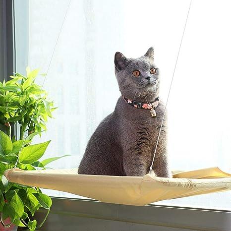 Aurantiaco - 1 Cama Colgante para Gato, Asiento Soleado, Gato o Cachorro, para