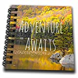 3dRose db_151389_3 Adventure Awaits Life Inspiring Motivational Words Autumn Forest Lake Photography Quotation Mini Notepad, 4″ x 4″