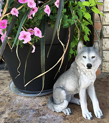 - Majestic Mythical Sitting Gray Alpha Wolf Statue Figurine Timberwolves Decor Wisdom of The Woodlands For Home Decorative Patio Greeter